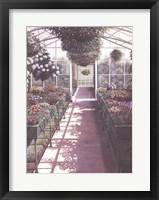 Framed Greenhouse Effect