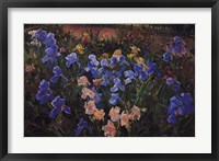 Framed Iris Bed