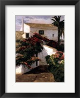 Courtyard Blossoms Framed Print