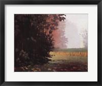 Framed Montlake Fog