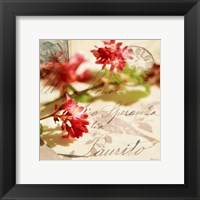 Framed Vintage Letters and Pink Blossoms