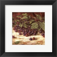 Framed Blackberries