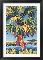 Framed Pine Island Palm