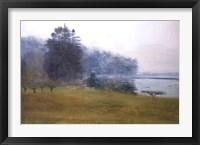 Framed Trees In Fog and Mist