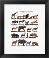 Framed African Animals