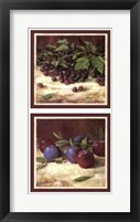 Framed Blackberry Plum Combo