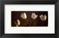 Illuminating Tulips III Framed Print
