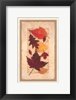 Framed Autumn Harvest I