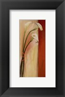 Framed Calla Tres