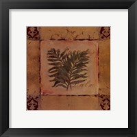 Paradise Palm Framed Print