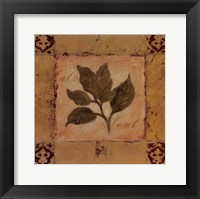 Solomon's Seal Framed Print