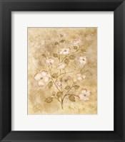 Framed Floral II