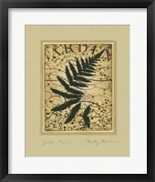 Framed Garden Fern