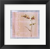 Framed Graceful Orchids II