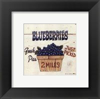Framed Blueberries Just Picked