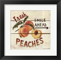 Framed Fresh Peaches