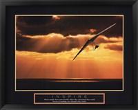 Framed Inspire - Hang Glider
