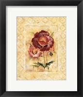Framed Classic Camellia