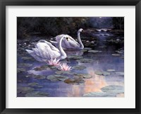 Framed Swans and Waterfall