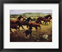 Framed Mares Foals