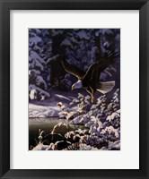 Framed Eagle In Flight