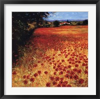 Field Of Red And Gold Framed Print