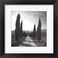 Framed Mensano, Tuscany