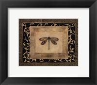 Framed Dragon Fly I