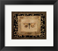 Framed Dragon Fly II