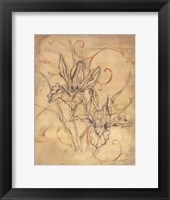 Framed Pencil Sketch Floral III