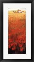 Colors Of Summer Framed Print