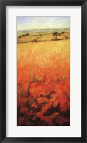 Field With Poppies Framed Print