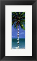 Framed Coastal Palm III