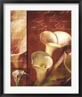 Framed Calla Composite II