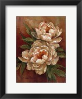 Framed White Peonies I