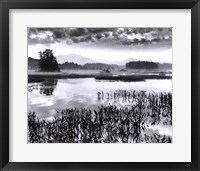Oseetah Lake Morning Framed Print