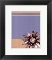 Framed Simplicity 4
