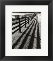 Framed Fences And Shadows, Florida