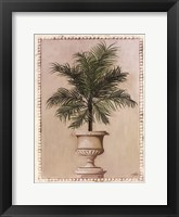 Palm Appeal II Framed Print
