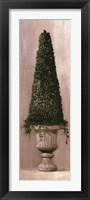 Florentine Topiary ll Framed Print