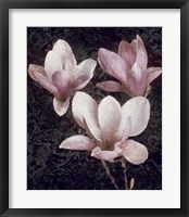 Framed Pink Magnolias II