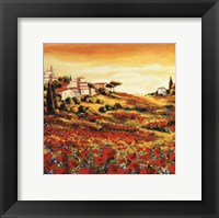 Framed Valley Of Poppies