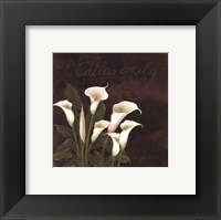 Framed Midnight Calla Lily