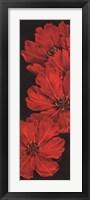 Bella Grande Tulips Framed Print