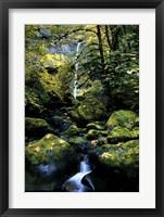 Framed Elowah Falls
