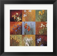 Framed Iris Fields I