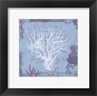 Seaside Coral III Framed Print