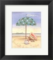 Seashells By The Seashore Framed Print