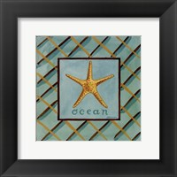 Coastal II Framed Print