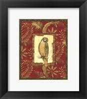 Framed Exotica Parrot